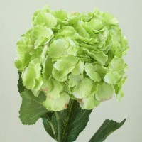 Green Artificial Flowers
