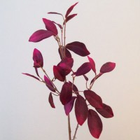 Artificial Foliage by Colour